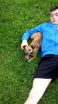 Small jack Russell  terrier lost in from the togher area. Female. 6 years old