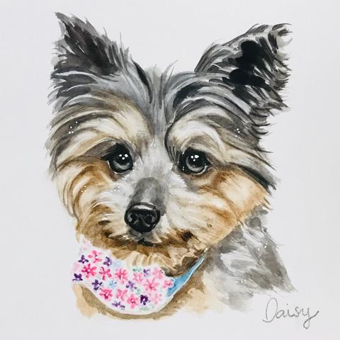 daisy-portrait